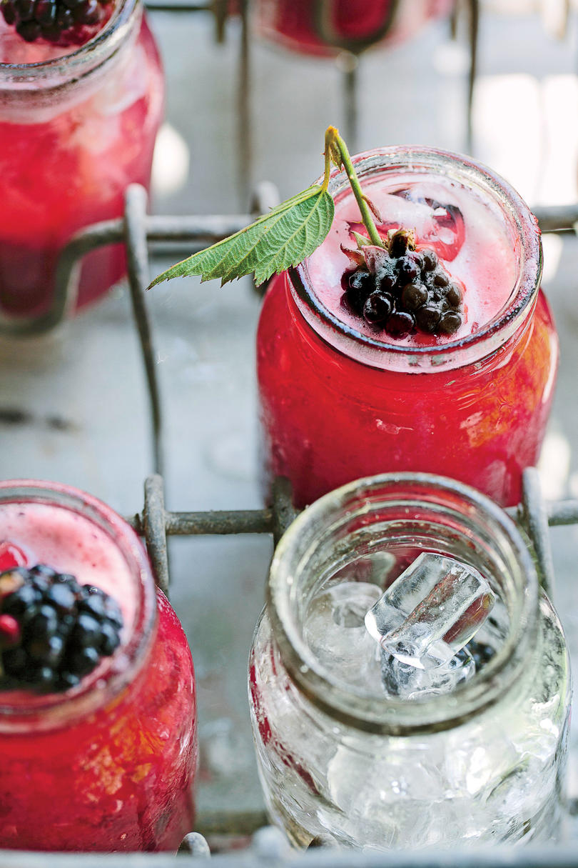 Blackberry Pisco Sour Recipe