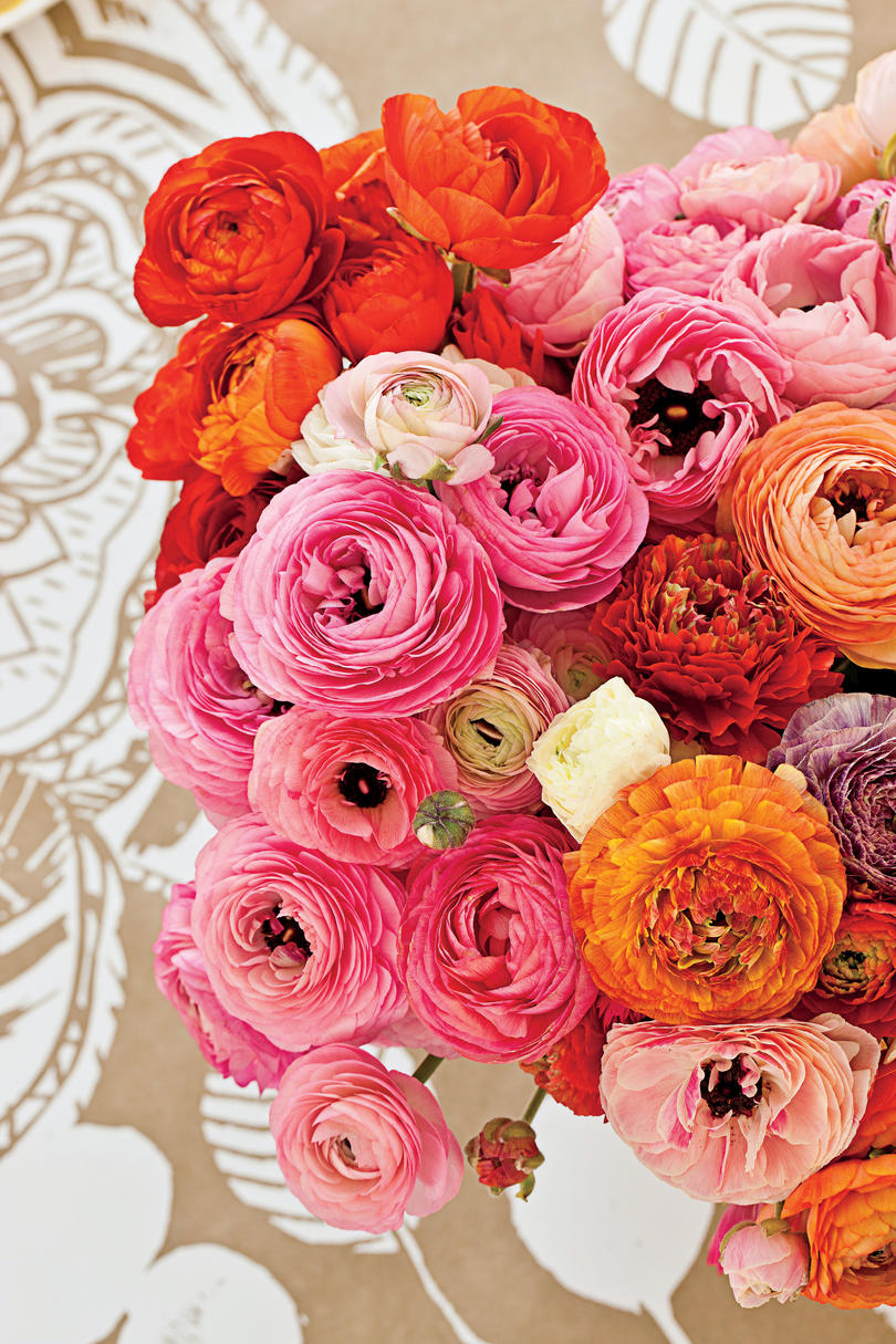 The Centerpiece & Cheery Birthday Table Setting - Southern Living