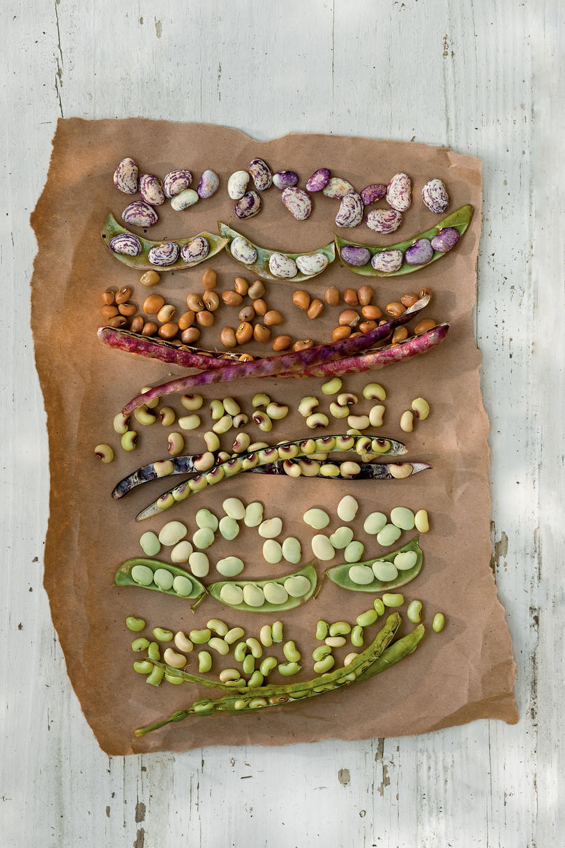 All About Field Peas