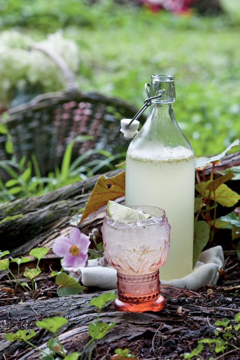 RX1706_ Our Most Refreshing Summer Drinks Lime Fizz