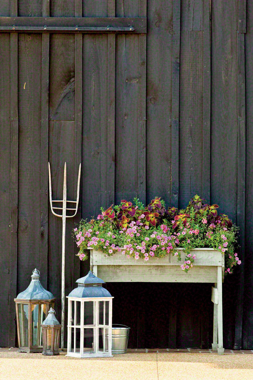 Pink Petunia Window Box