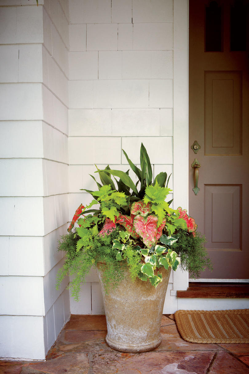 Front Door Container Gardens Southern Living