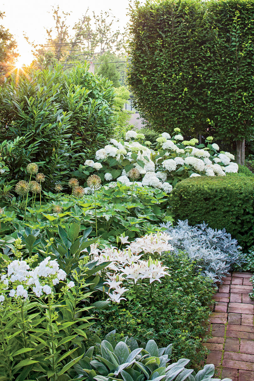 Small Space Garden Big Impact Southern Living