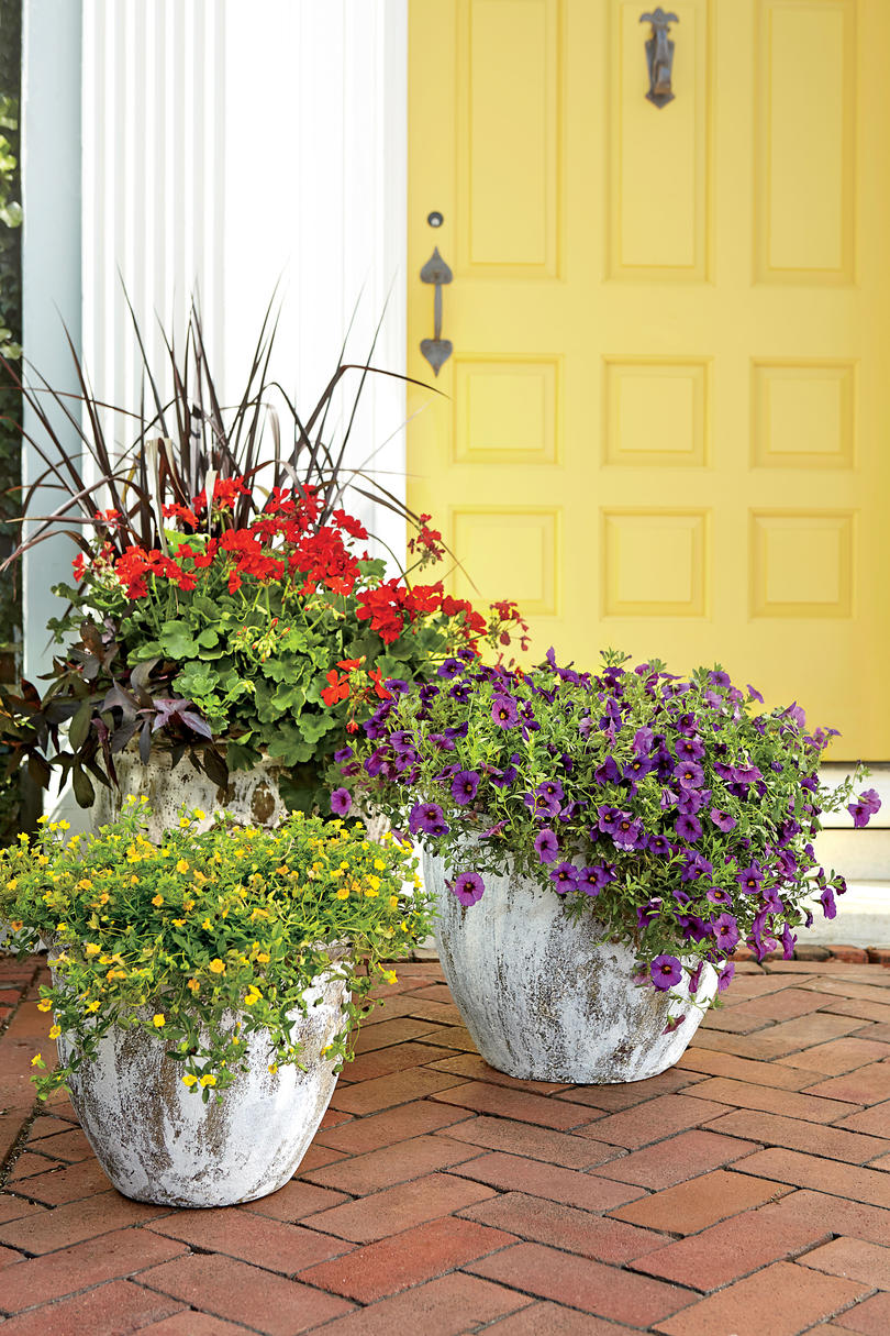 Front door container gardens southern living Container plant ideas front door
