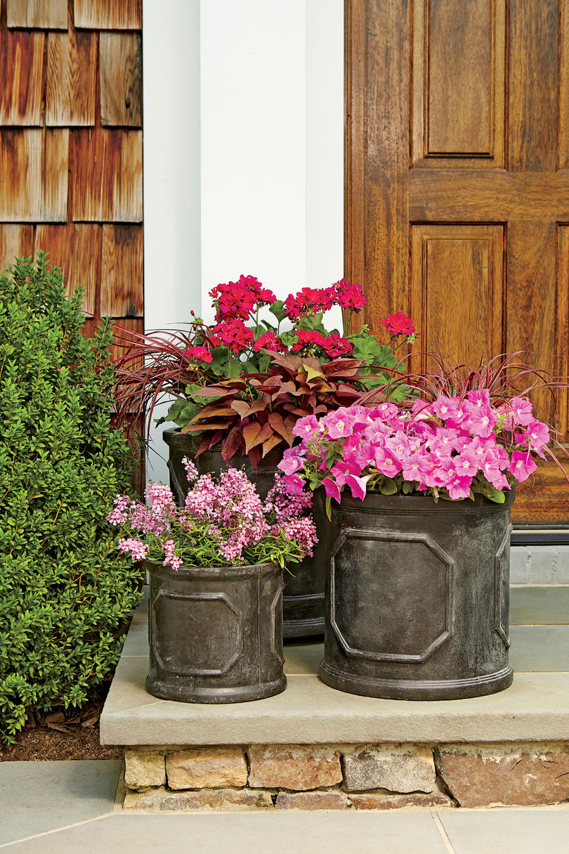Pink Nature Inspired Planters Spectacular Container Gardening Ideas