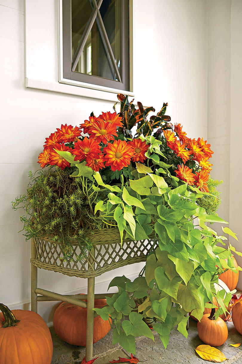 Fall Container Gardening on Stacked Display Table