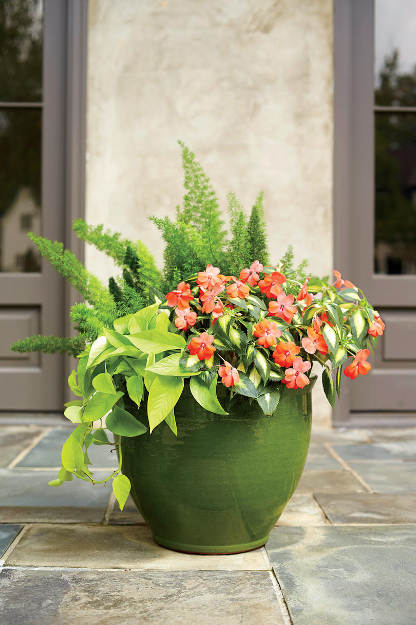 Spectacular container gardening ideas southern living - Container gardens for sun ...