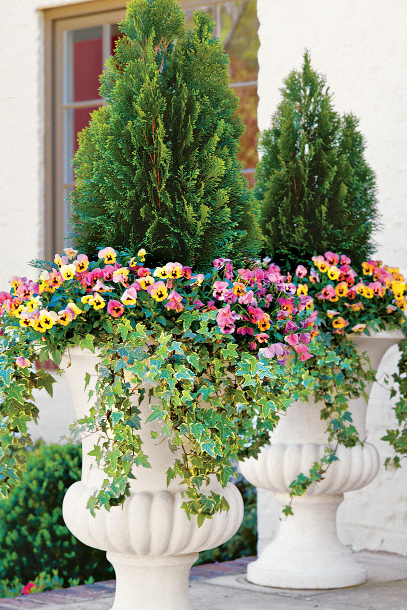 Fall container gardening ideas southern living - Best flower combinations for containers ...