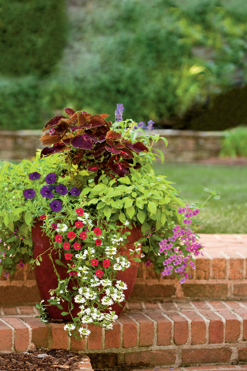 Tiny Home Designs: Spectacular Container Gardening Ideas