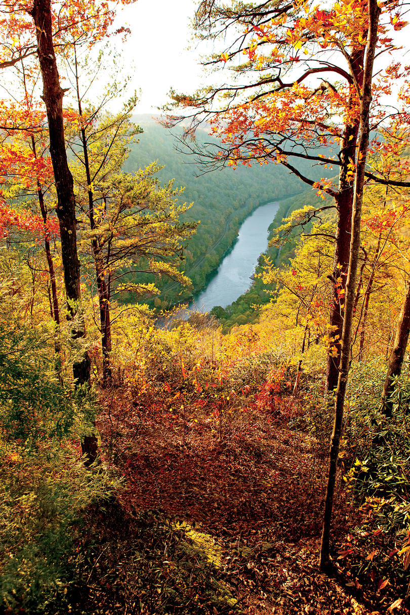 The South\'s Best Fall Colors - Southern Living