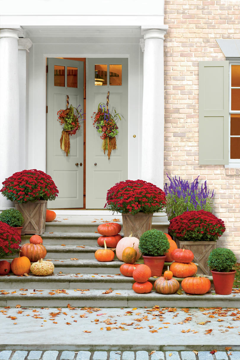 Decorative Mums and Pumpkins
