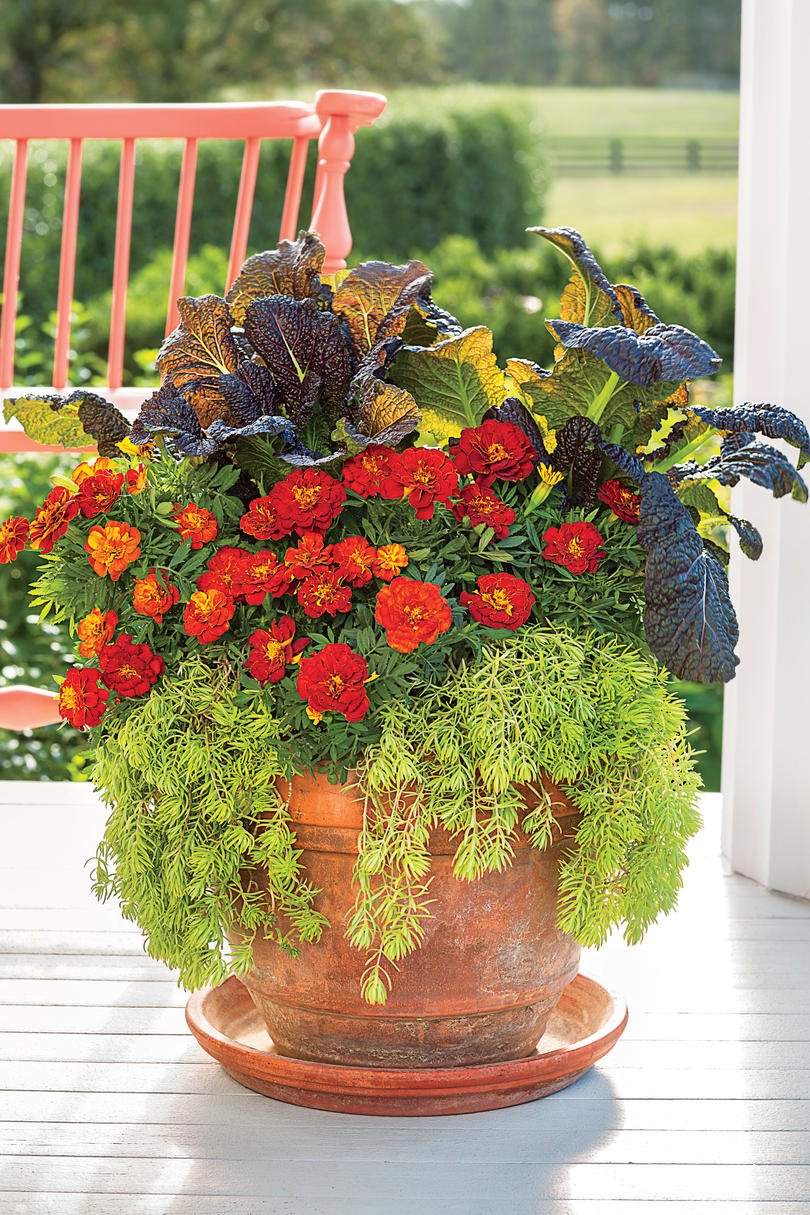 Fall container gardening ideas southern living - Potted autumn flowers ...