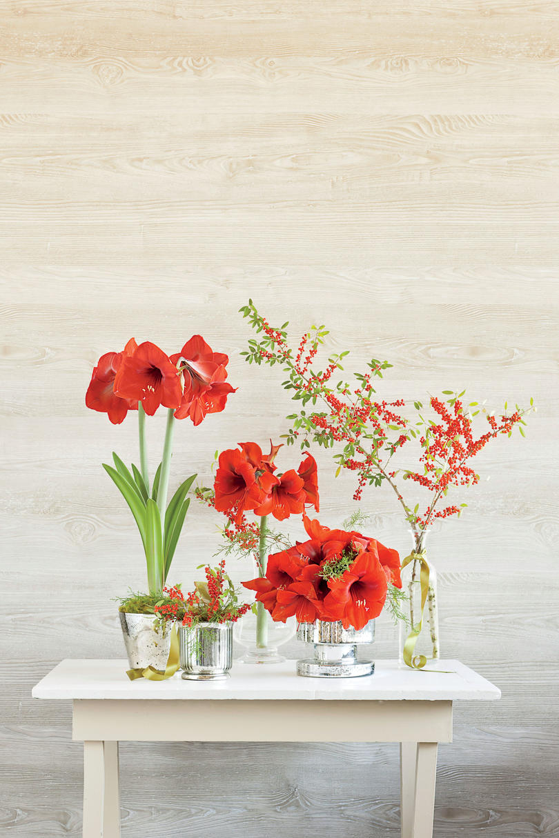 Dress Your Home In Red
