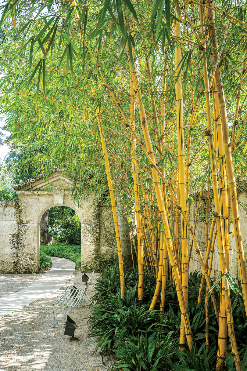 Tropical Garden in Coral Gables - Southern Living