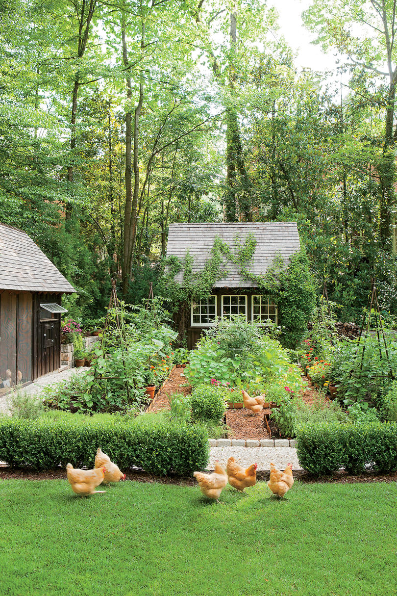 Dream Garden with a Chicken Coop