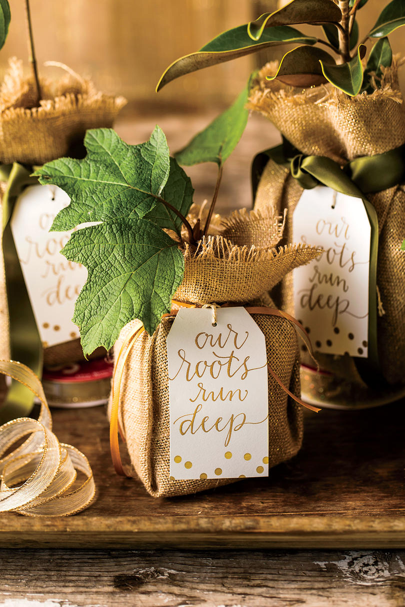 Magnolia Seedling Party Favor