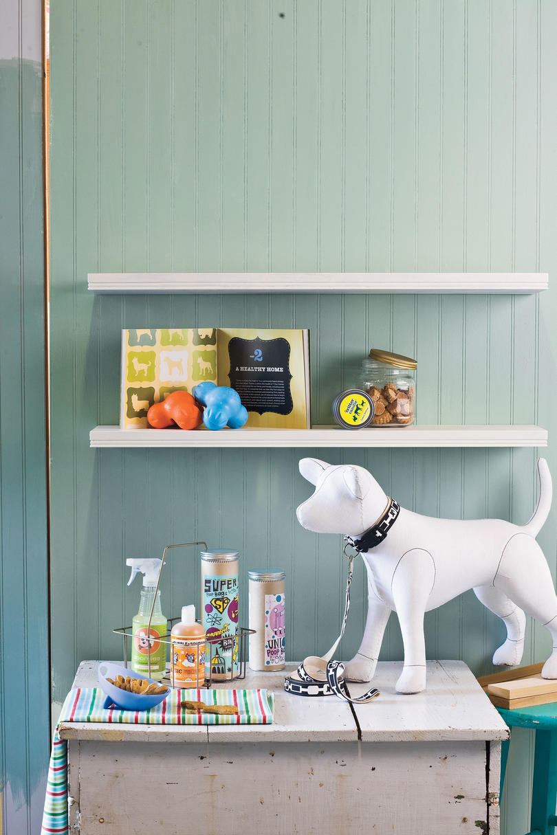 Latest & Greatest Dog Products - Southern Living