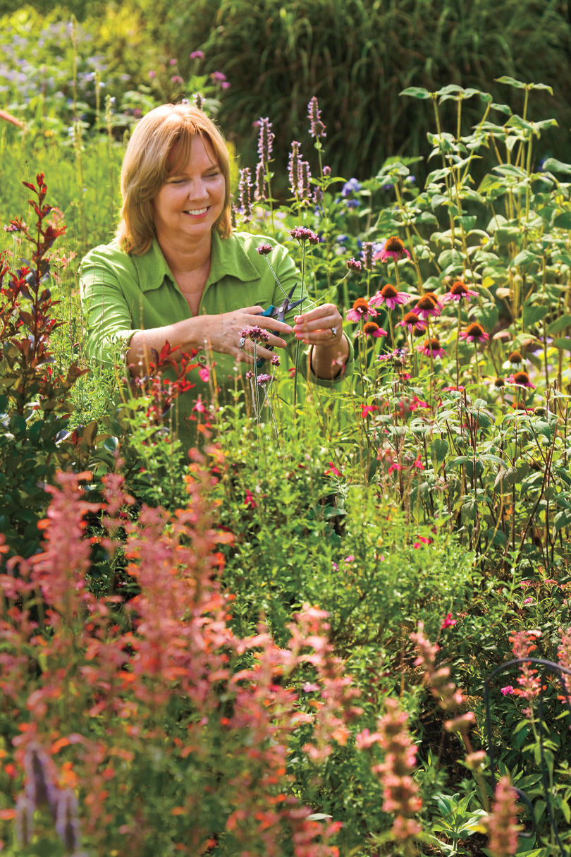 Year round plants for flower beds - Deer Proof Your Garden