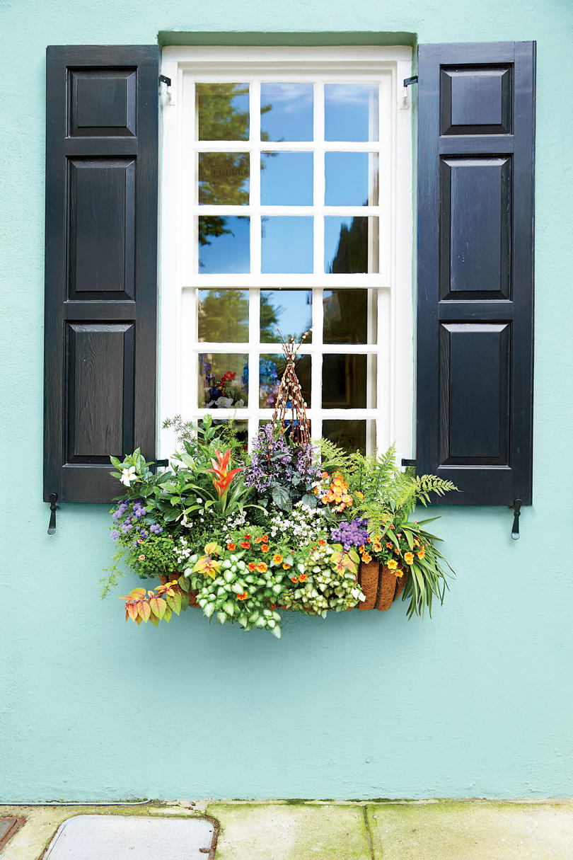 add charm with window boxes southern living bright mini garden window box