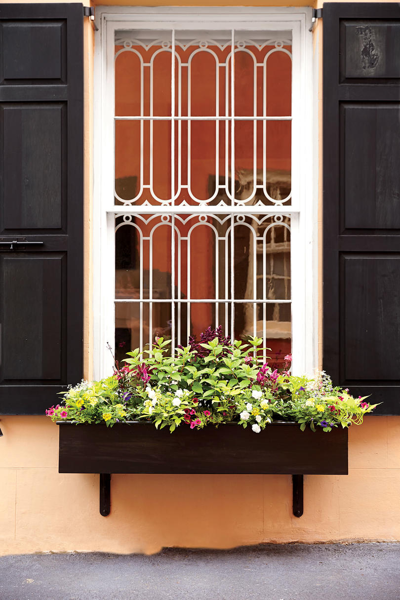Christmas window box filler - Small Window Box With Greenery