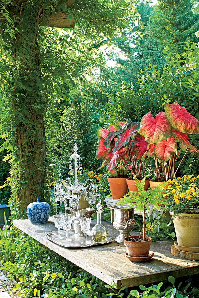 Garden Plant Table Display