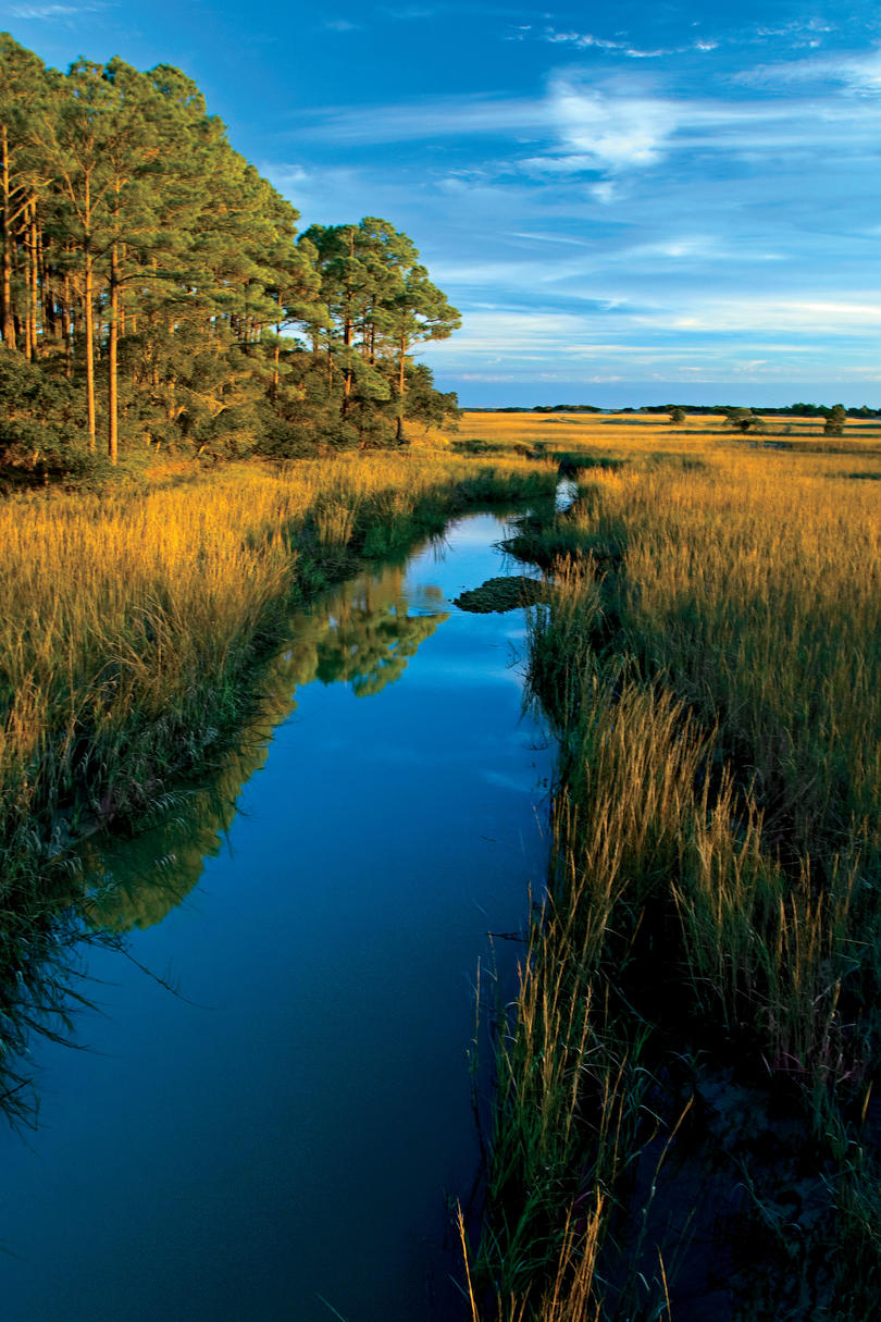Escape to The Sanctuary: Kiawah Island, SC