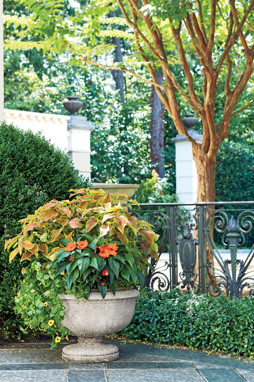 Orange and Green Container Garden. Spectacular Container Gardening Ideas   Southern Living