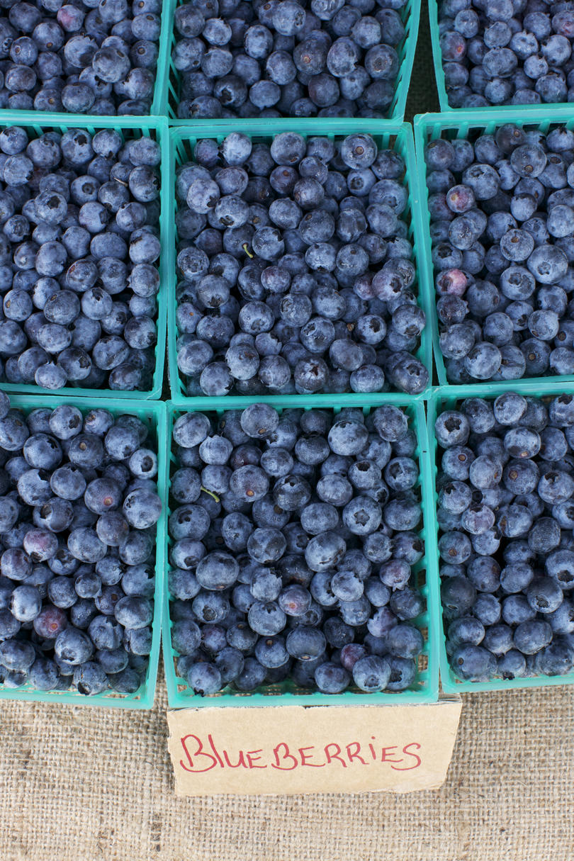Basket of Blueberries