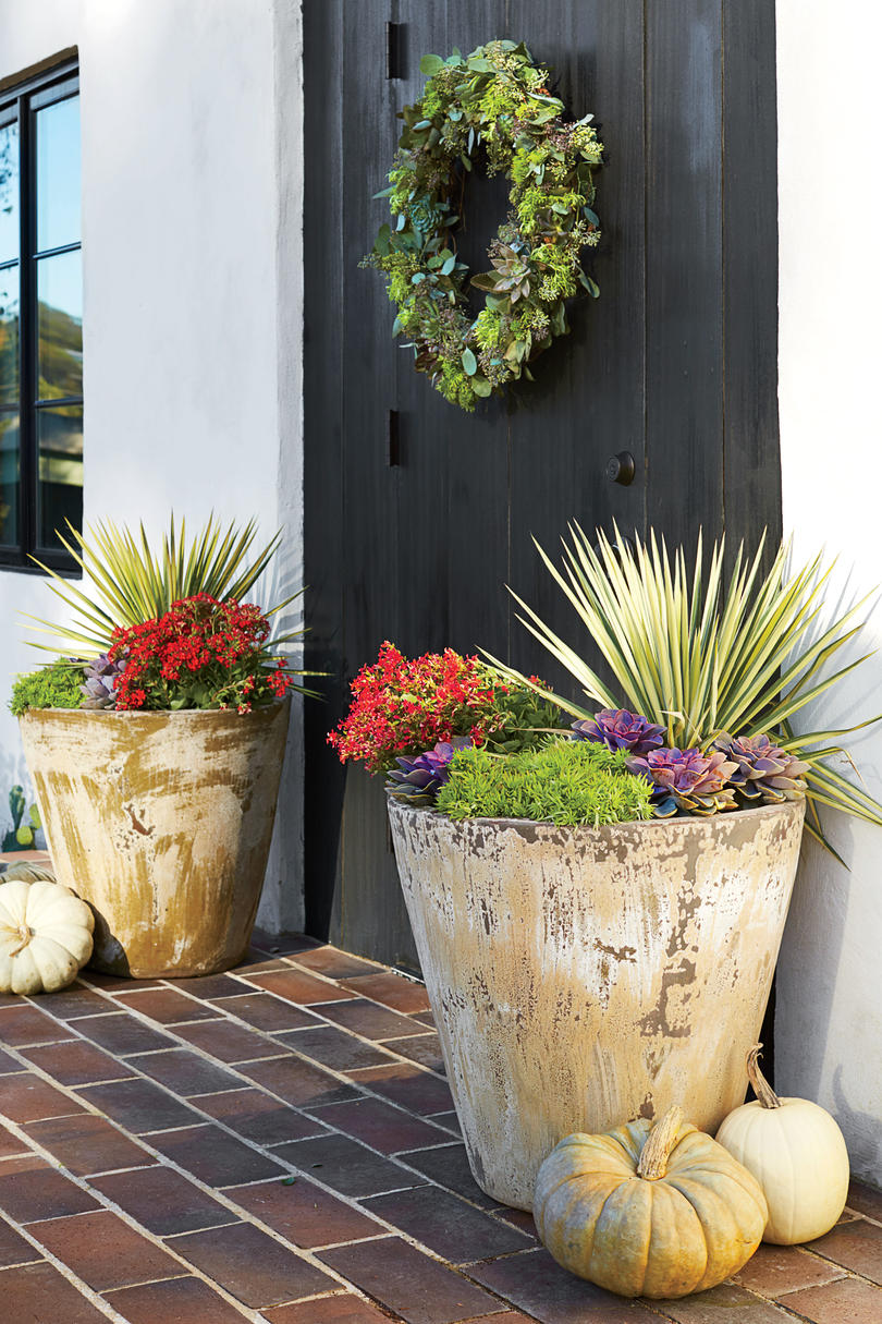 Fall Gardening Ideas Part - 45: Texas And The Southwest Regional Container
