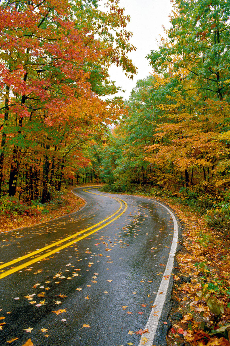 Talimena Scenic Highway 88 Fall Color
