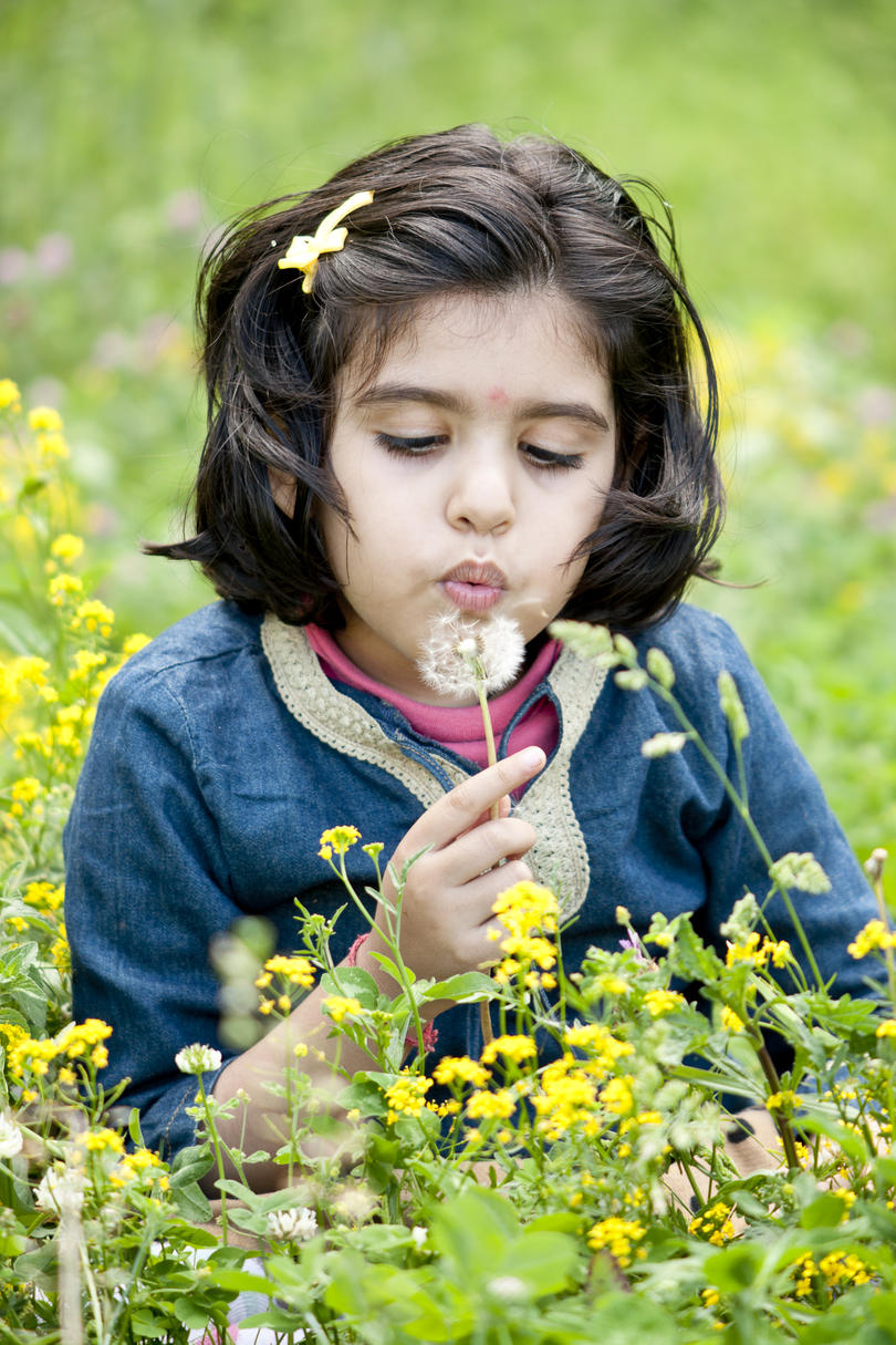 Girl blowing away dandelions.