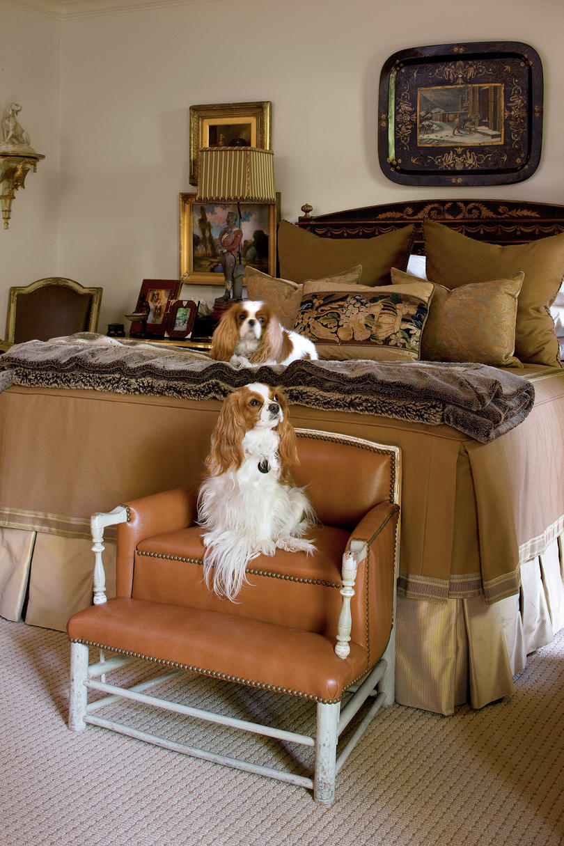two king charles spaniels on bed