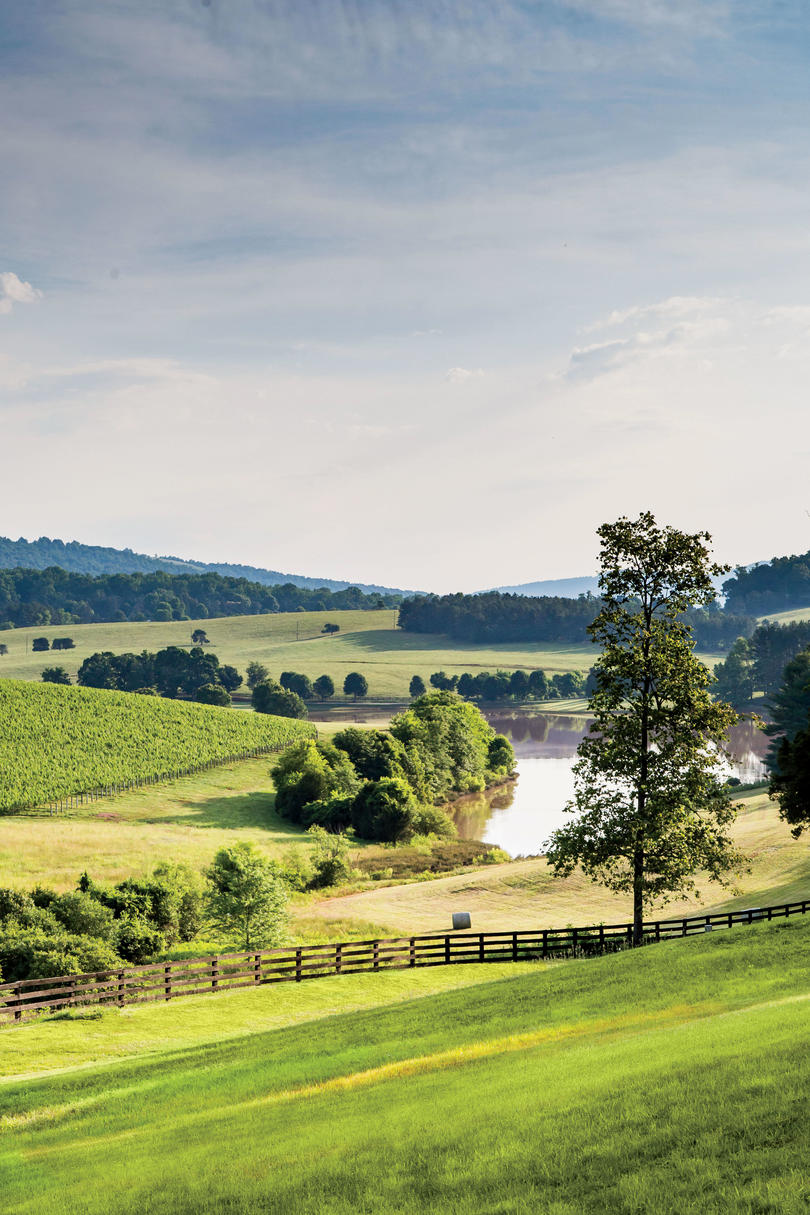 Plan a girlfriend getaway to virginia 39 s wine country for Best time to visit wine country