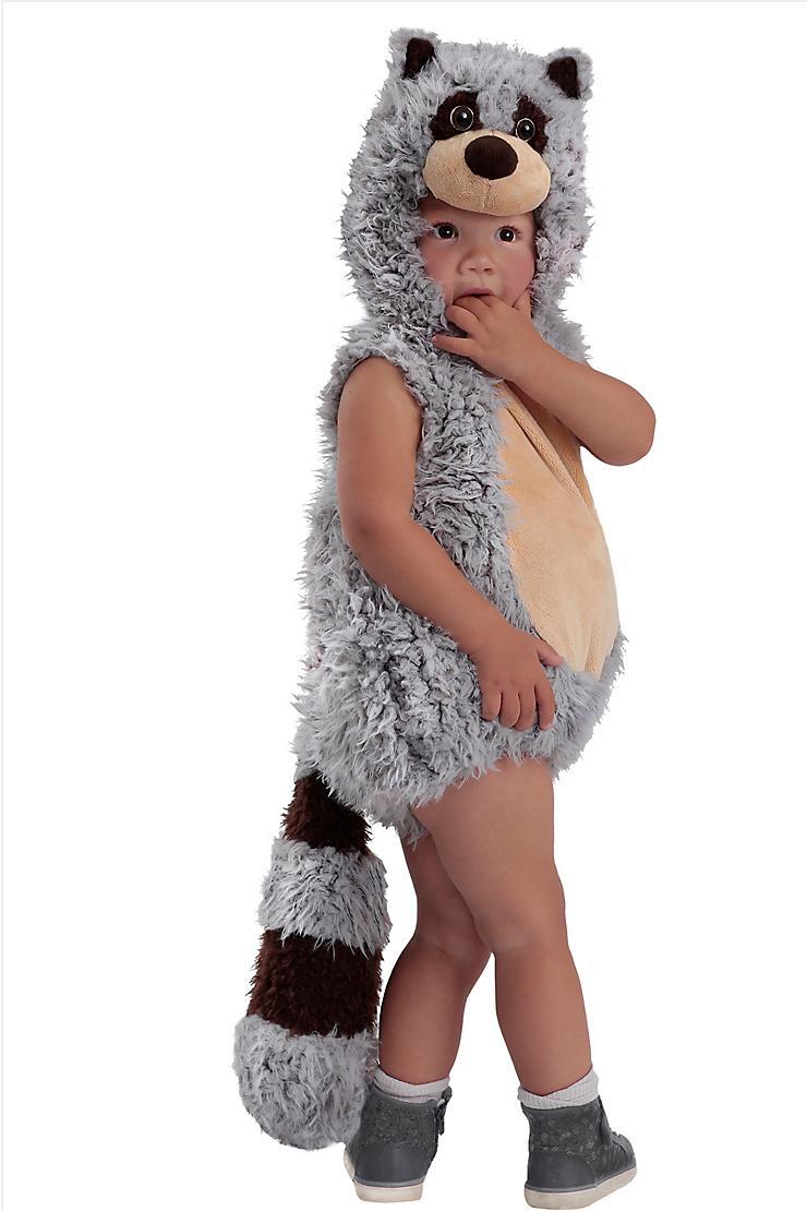 Raccoon Halloween Costume