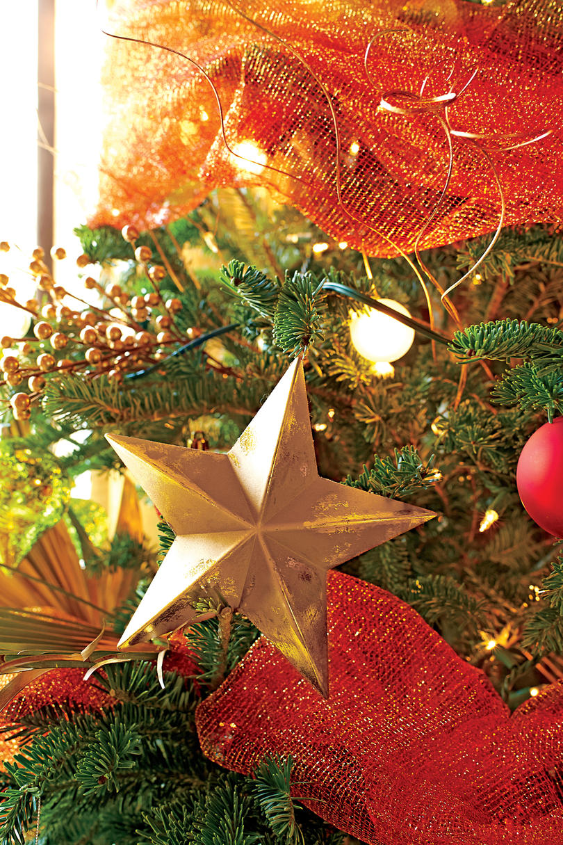 Star Ornament and Gold Berry Branch