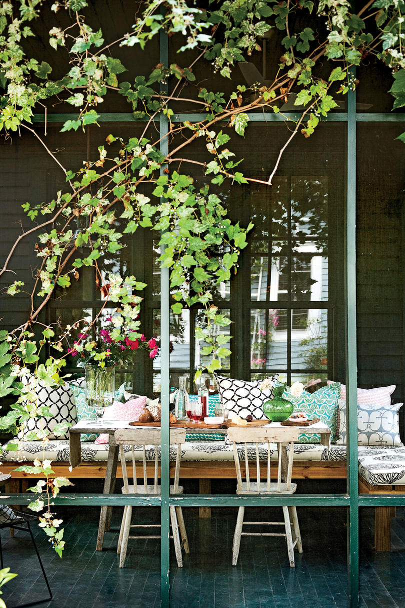 Vines Outside of Screened Porch