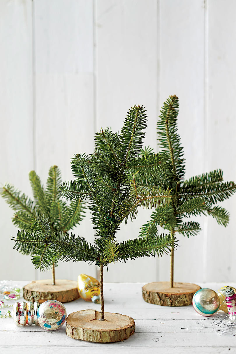 Tree Branch Table Top Display