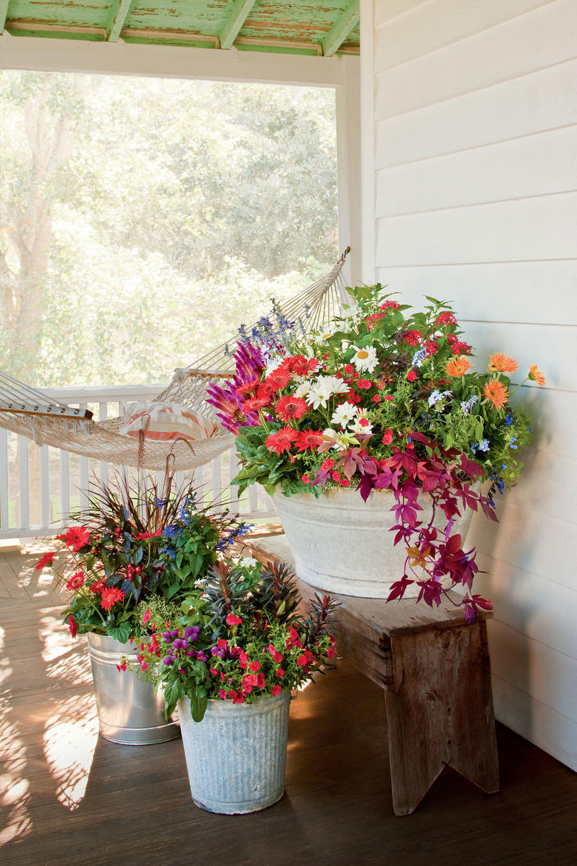 Container Garden in Buckets