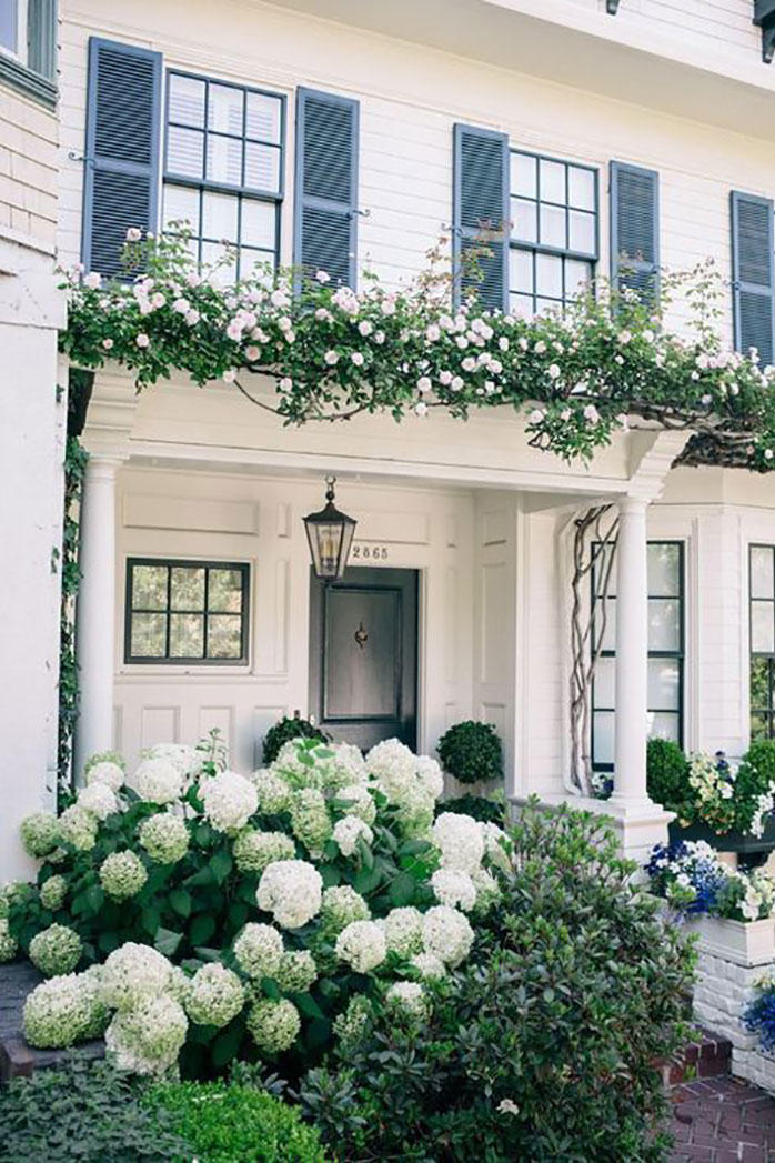 White Mophead Hydrangeas and White House