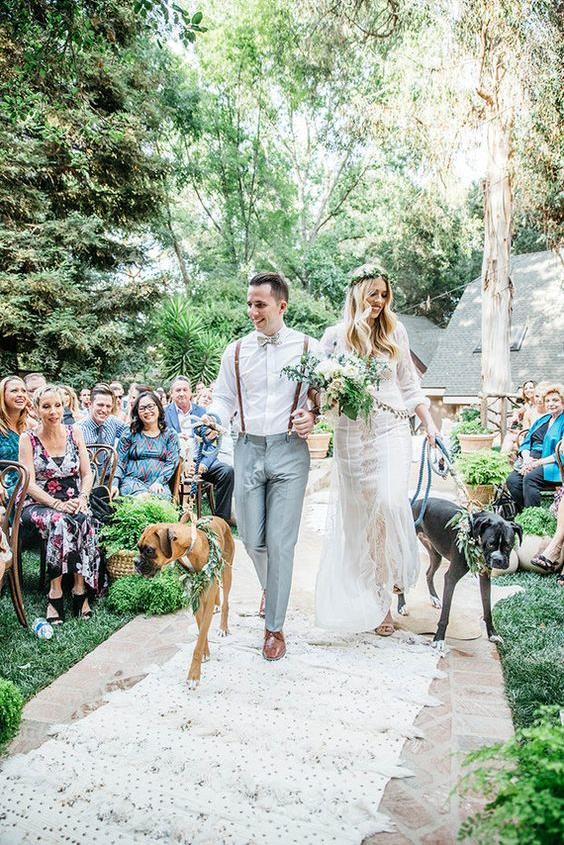 Dogs in Wedding walk down the isle