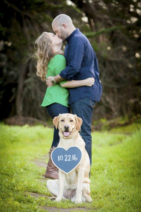Dogs in Wedding save the date