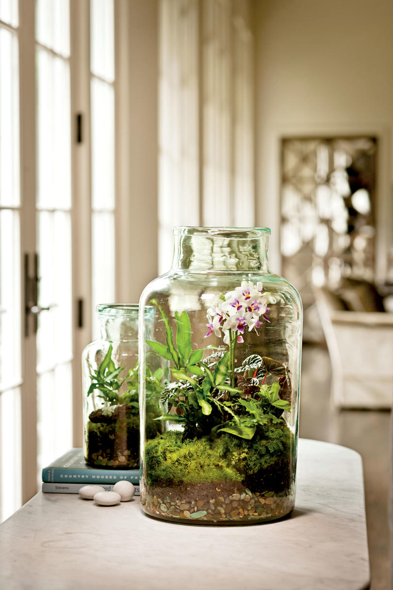 Create an Outdoor Tabletop Terrarium