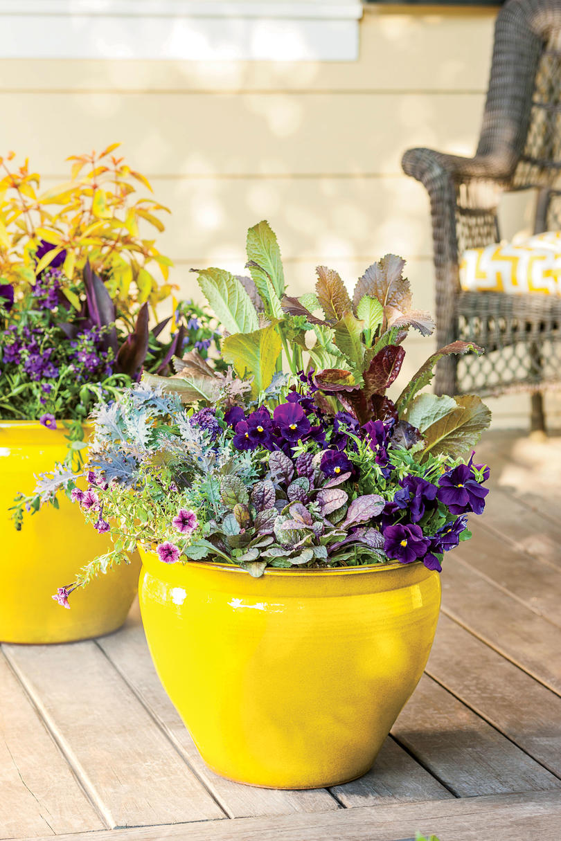Colorful Porch Container