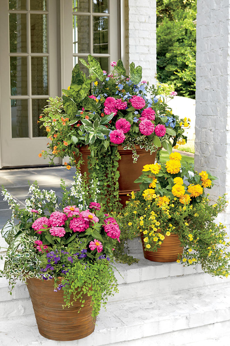 RX_1704_Spring Decor_Pink and Yellow Container Garden