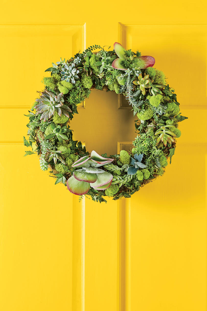 Cheery Moss-and-Succulent Wreath