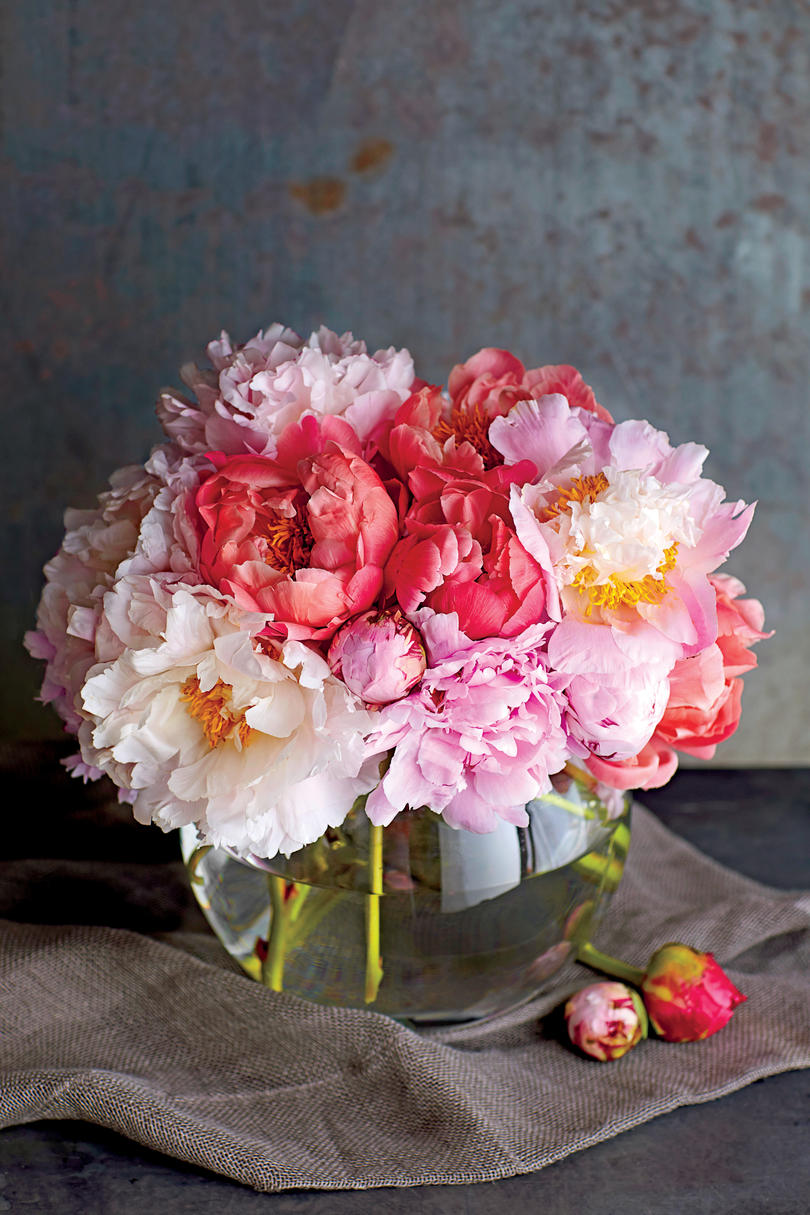 10 flowers that thrive in full sun southern living peonies in vase reviewsmspy