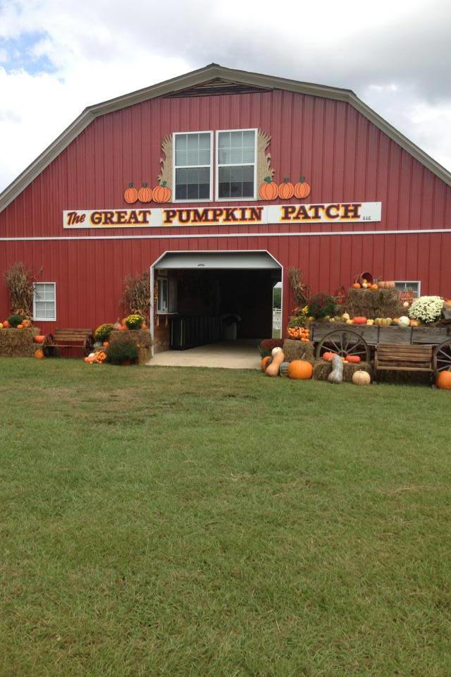 Best Pumpkin Patches in Every Southern State Alabama