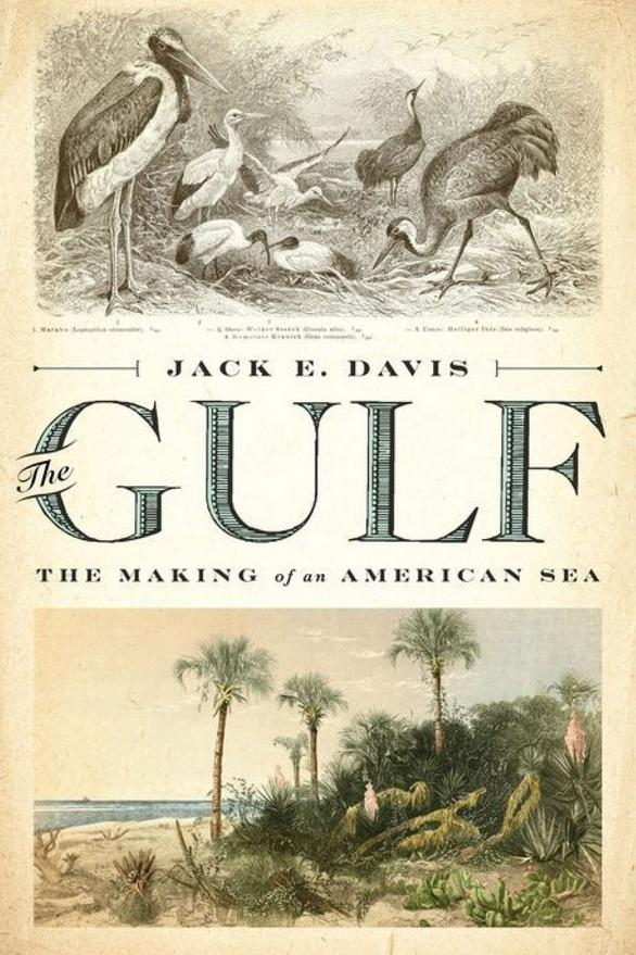 The Gulf: The Making of an American Sea by Jack E. Davis