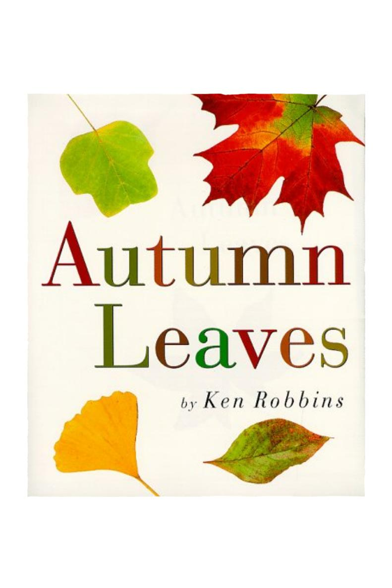 Autumn Leaves by Ken Robbins