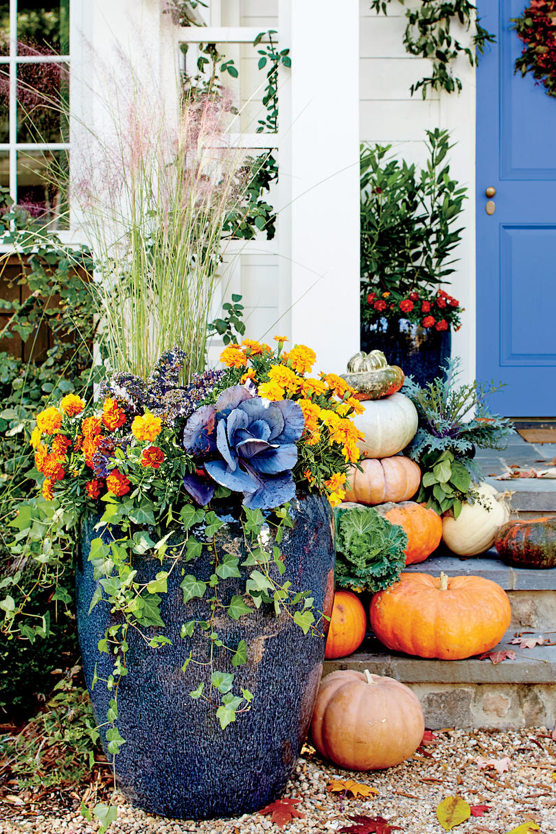 Bountiful Container with Ornamental Kale and Cabbage